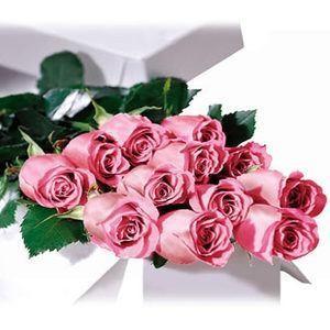 Premium Dozen Long Stem Pink Roses In A Box