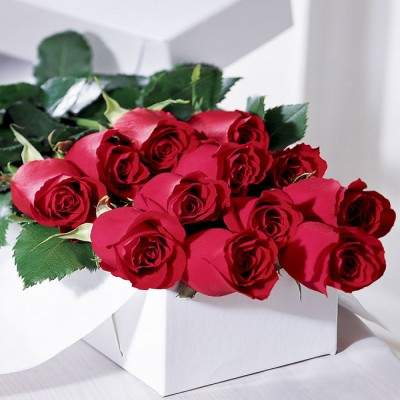 Premium Dozen Long Stem Red Roses In a Box