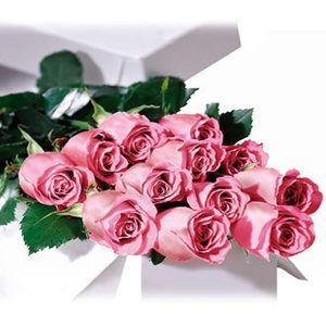 Premium Dozen Long Stem Pink Roses In A Box