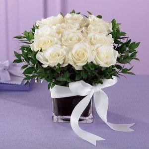 Pure_Romance_Rose_B