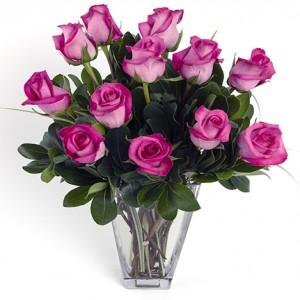 Dozen Hot Pink Medium Stem Roses