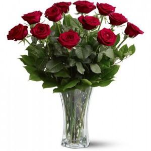 Dozen-red-roses